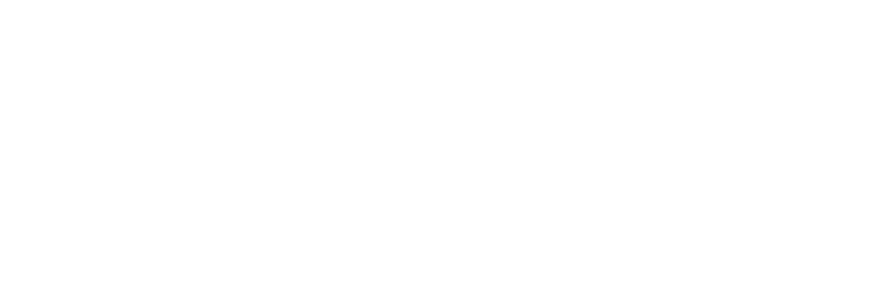 wayfayrer logo